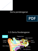 Deria pendengaran2014