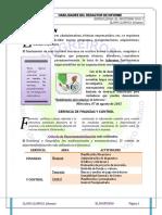 Habilidades Del Redactor de Informe .