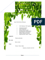 137541703-plantas-emdicinales-1.doc