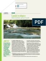 fs_caudal_ecologico.pdf