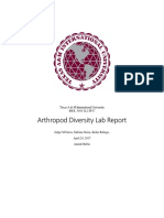 Arthropod Diversity Lab Report