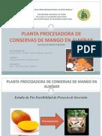 mangoenalmbar-1270135475895-phpapp02