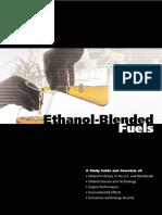 teachers_guide_ethanol.pdf