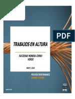 CAPACITACION DE TRABAJOS EN ALTURA  Mayo 2010.pdf
