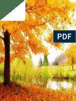 Autumn Scenery Desktop Wallpapers (3).pdf