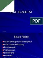 198428_8251_SIKLUS ASETAT
