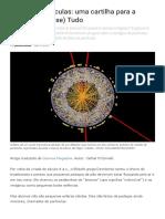 Física de Partículas_ Uma Cartilha Para a Teoria Do (Quase) Tudo _ Universo Racionalista