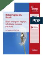 Efficacité Et Management Ènergétique - Méthodologie Et Impacts Socioéconomiques