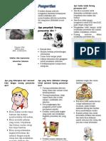 Leaflet DPD Fit