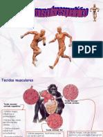 5 Tecidos Muscular