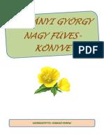 VASÚTMÁNIÁSOK IDE, VONATBUZULLS - Index Fórum