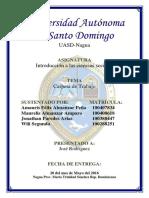 Tarea de Ciencias Sociales Amaurís Félix Almanzar Peña