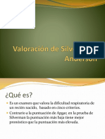 valoracindesilvermanyanderson-141204165726-conversion-gate02.pdf