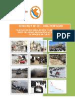 Proyecto Directiva Simulacro Simulacion 2016 Ht 201611891 Sgrd Ogaj