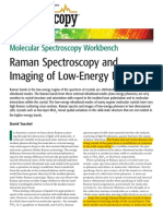 Specy Workbench-Raman Spec and Imaging of Low Energy Phonons