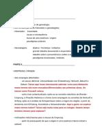 Seminario - Foucault Nietzsche Genealogia (Editado)
