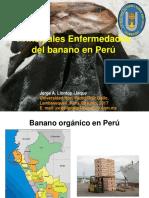 Enfermed Banano. 05 Junio 2017 (1)