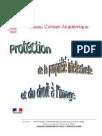 protecint.pdf
