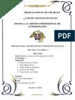 Informe-Artesanías