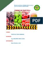 TRAZADO DE UNA PLANTACIÓN FRUTAL EN EL SISTEMA RECTANGULAR.docx