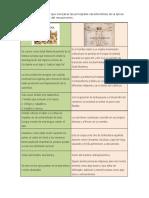 Caracteristicas Mediovo y Renacimiento