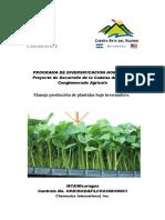 RENF01C965mp.pdf