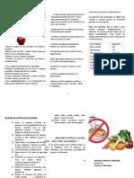 Triptico Guia Alimentacion Saludable Vanne