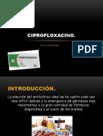 Ciprofloxacino 150308000121 Conversion Gate01
