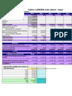 Análisis de La Inversión_orégano
