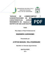 Tesis Ayrton Manuel Vela Rodriguez