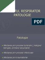 Aparatul Respirator Patologie