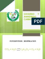 13_14_Oxigeno_CO2.pptx