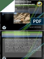 2. Caracterizacion Geomecanica de Macizos Rocosos Ppt