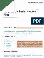 Esquema_simplificado_presentacion_de_proyectos_tesis.pdf