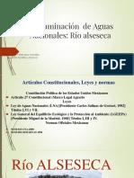 Derecho Ambiental- Contaminación  de Aguas Nacionales rio alseseca.pptx