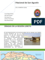 IMPACTO AMBIENTAL DE LA MINERA ILEGAL.pptx