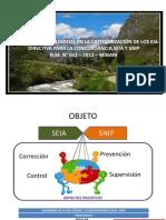Directiva para la Concordancia.pptx