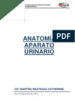 upig urinario