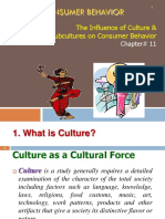 Ch 11 Culture and Subculture Influence on CB