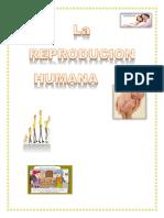 La Reproducion Humana