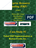 ERP_other Case Studies