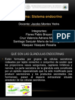 Sistema Endoccrino