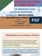 Glandulatiroides 130706131036 Phpapp01 (1)