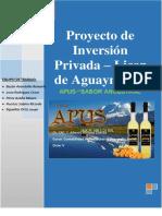 Proyecto de Inversion Privada - Licor de Aguaymanto