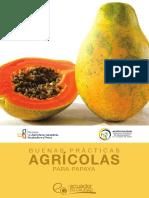 GUIA-PAPAYA.pdf