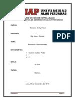 291378301 Monografia Derechos Fundamentales