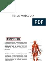 Tej. Muscular