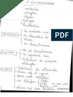 Esquema de los Reinos.pdf
