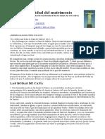 1997 10 04 La Santidad Del Matrimonio