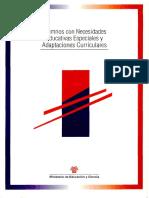 Alumnos Con Necesidades Educativas Especials y Adaptaciones Curriculares- Rosa Blanco- Castellano